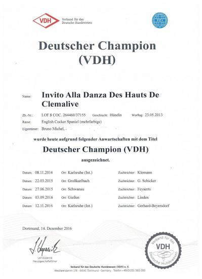Deutscher champion vdh danza sans adresse