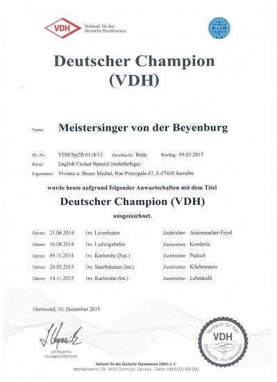 Maestro champion