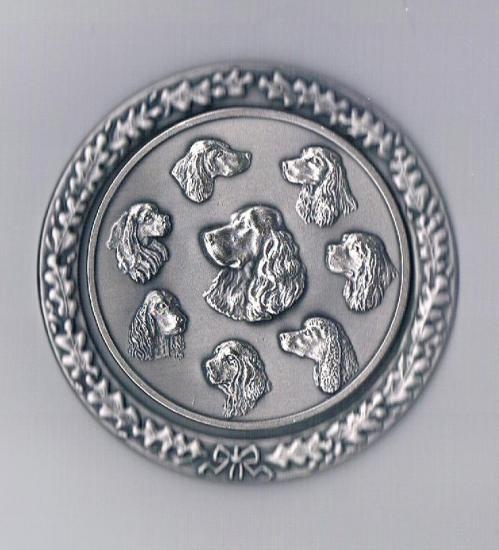 Silberne klubplakette mit umrahmung